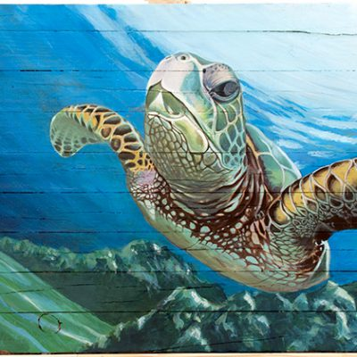 Painting of a turtle in the sea - acrylic on driftwood board