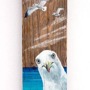 Curious seagull, painting with acrylic colors on driftwood - Jardin del Mar